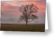 Early Morning Promises Greeting Card