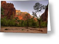 Early Morning Solitude At Zion  Greeting Card