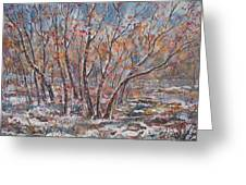 Early Snow. Greeting Card