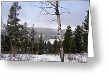 Early Snows In The Rockies Greeting Card