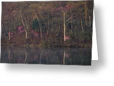 Early Spring Lake Shore Greeting Card