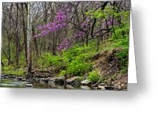 Early Spring On Mill Creek 2 Greeting Card