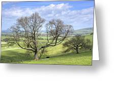 Early Spring On Steryning Bowl Greeting Card