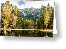 Early Spring Reflections Greeting Card
