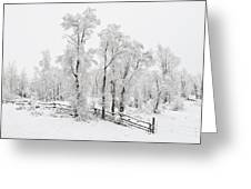 Early Spring Snow Greeting Card