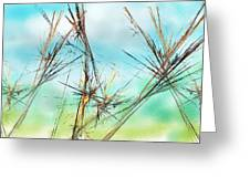 Early Spring Twigs Greeting Card