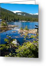 Early Summer At Finch Lake Greeting Card