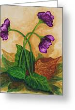 Early Violets Greeting Card