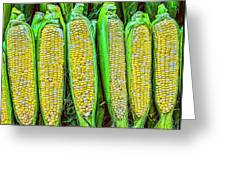Ears Of Corn Greeting Card