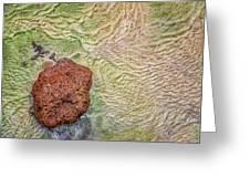Earth Art 9491 Greeting Card