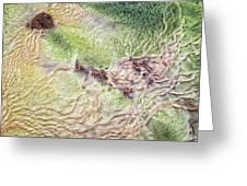 Earth Art 9492 Greeting Card