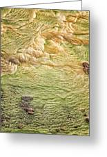 Earth Art 9509 Greeting Card