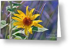 Earth Day Wild Flower  Greeting Card