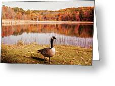 Earth Tone Autumn Pond Goose Greeting Card