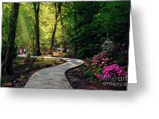 Earyl Morning Walk Through Honor Heights Park Greeting Card