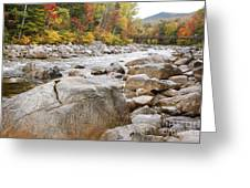 East Branch Of The Pemigewasset River - White Mountains New Hampshire Usa Greeting Card