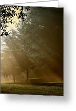 East Park Morning Greeting Card