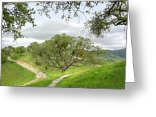 East Ridge Trail -  Spring Greeting Card