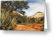 East Zion Afternoon Greeting Card