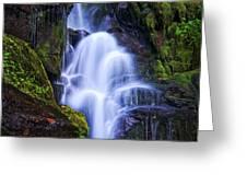 Eastatoe Falls Detail #8 Greeting Card