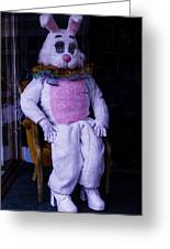 Easter Bunny Costume  Greeting Card
