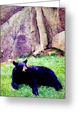 Eastern Black Bear Greeting Card