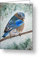 Eastern bluebird painting by angeles m pomata eastern bluebird greeting card m4hsunfo Image collections