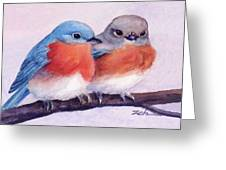 Eastern Bluebirds Greeting Card