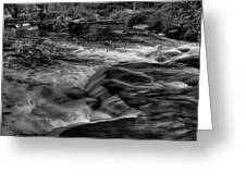 Eau Claire Dells Black And White Flow Greeting Card