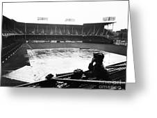 Ebbets Field, C1950 Greeting Card
