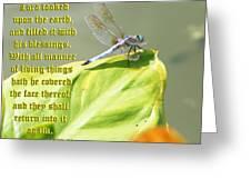Ecclesiasticus Sixteen Twenty Nine Greeting Card