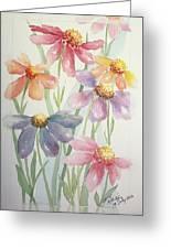 Echinacea Cheyenne Spirit Greeting Card