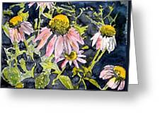 Echinacea Coneflower 2 Greeting Card