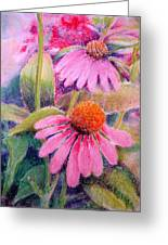 Echinacea Duo Greeting Card