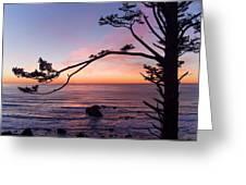 Ecola Park Sunset Greeting Card