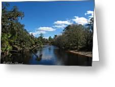 Econlockhatchee River Greeting Card