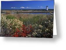 Edgartown Lighthouse Autumn Flowers Greeting Card