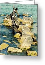 Edgewater Shores Greeting Card