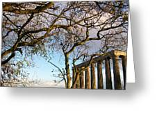 Edinburgh - Caption Hill Trees Greeting Card