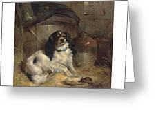 Edwin Douglas 1848-1914 A Cavalier King Charles Spaniel Greeting Card