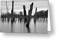 Eerie Lake Greeting Card