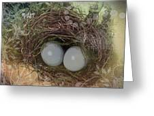 Eggs In A Nest Greeting Card