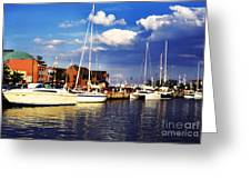 Ego Alley Evening Light Greeting Card