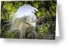Egret - 2975 Greeting Card