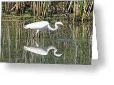 Egret Greeting Card by David Armstrong