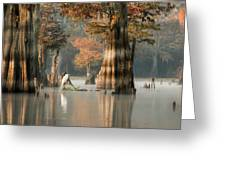 Egret Enjoying Foggy Morning In Atchafalaya Greeting Card
