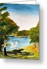 Egret Flying Over Texas Landscape Greeting Card