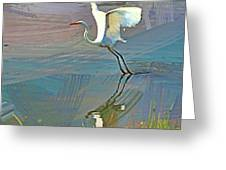 Egret Getting Ready For Take Off Greeting Card