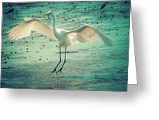 Egret Landing Greeting Card