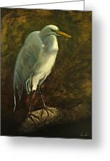 Egret On Branch Greeting Card
